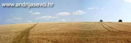Internet portal - općina Andrijaševci