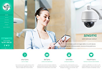 Sensitys Video surveillance