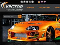 Vector MotorTuning